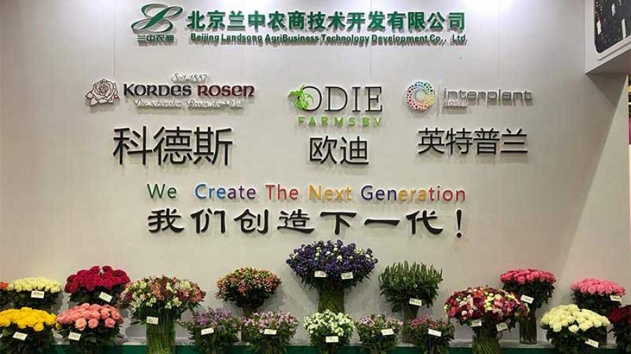 companies Hortiflorexpo